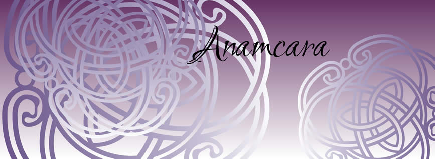 anamcaragraphic_home_page_867
